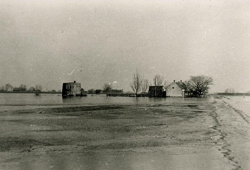 MAORT 1944